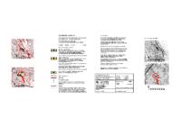 Kaavakartta_Kokemaenjoen_ROYKM_2_Hyvaksynta_24.1.2020