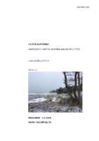 Selostus_Aaholmin_RAKM_4.3.2020