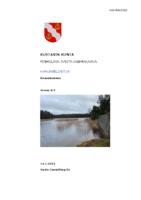 Selostus_Finholmin_RAK_Luonnos_14.1.2021