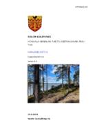 Selostus__Honkala_Annalan_RAKM_Luonnos_10.5.2021